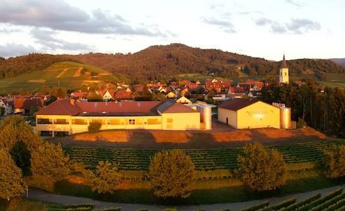 Ballrechten-Dottingen-Panorama