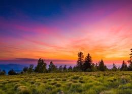 Abenteuer Schwarzwald Sommer Film Sonnenuntergang