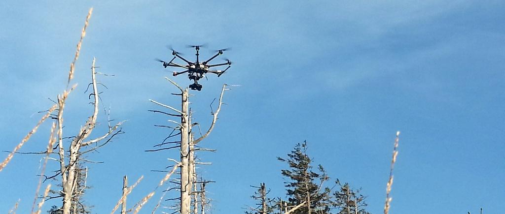 Schwarzwald Drohne 3