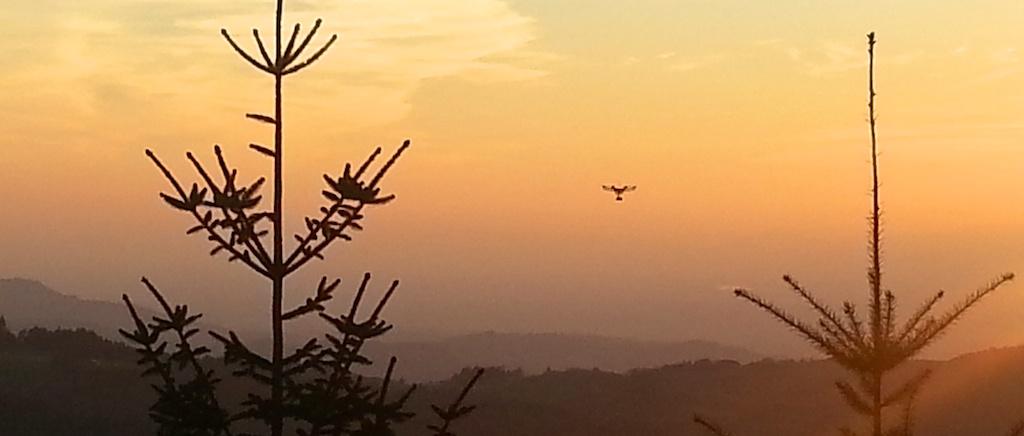 Schwarzwald Drohne 4