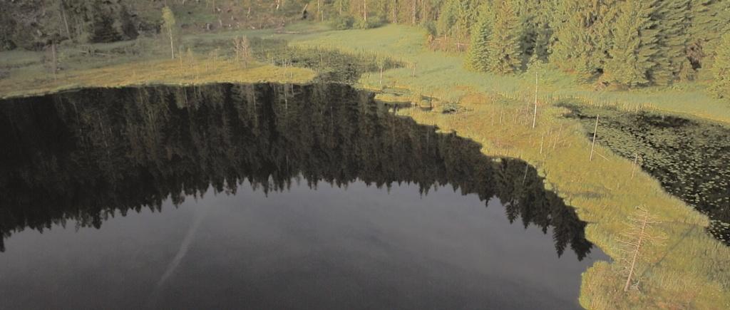 Huzenbacher See Schwarzwald Luftaufnahme Drohne